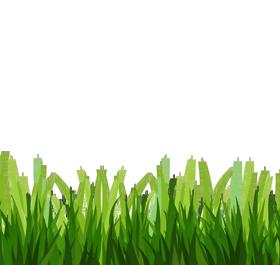 Grass clipart 4
