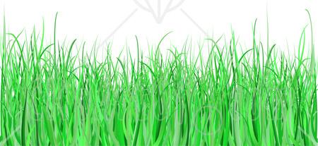 Grass clipart 9