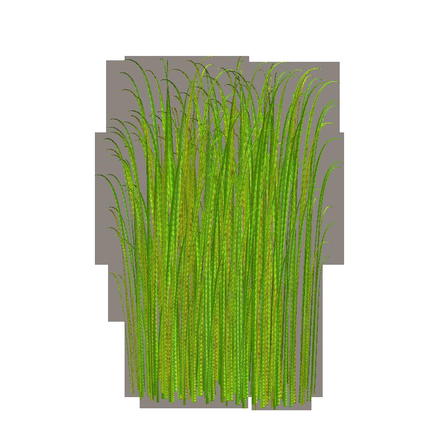 Grass clipart frpic