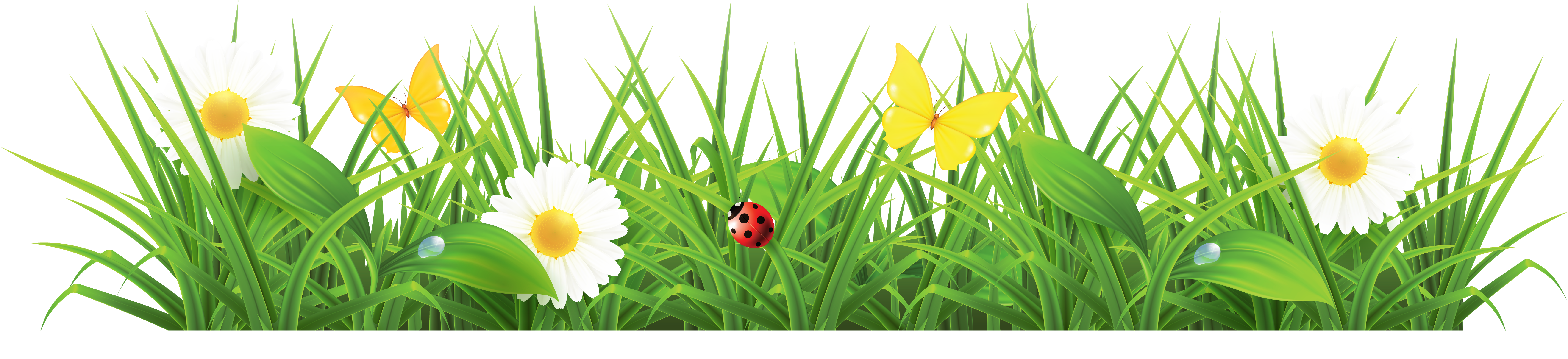 Grass clipart images free