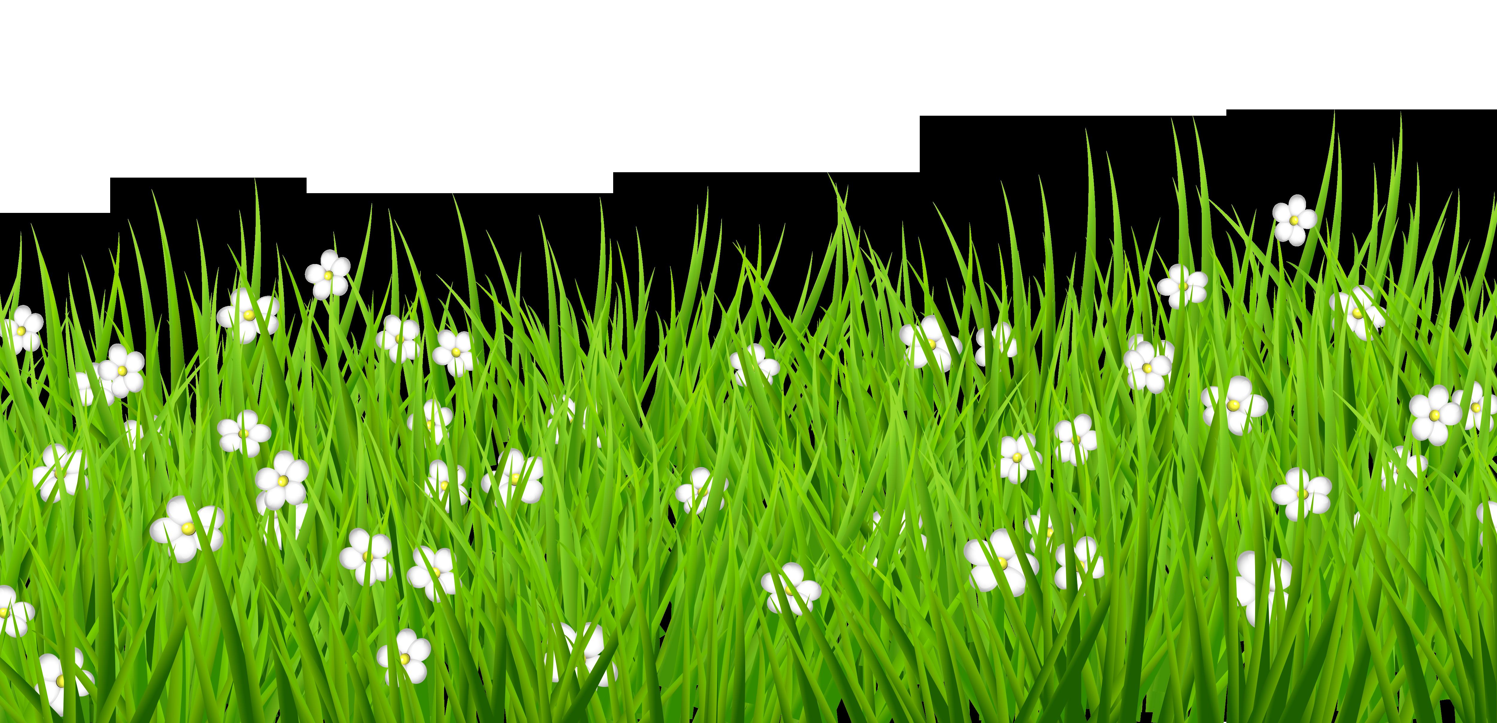 Grass clipart transparent