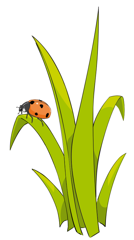 Grass free to use clipart 2