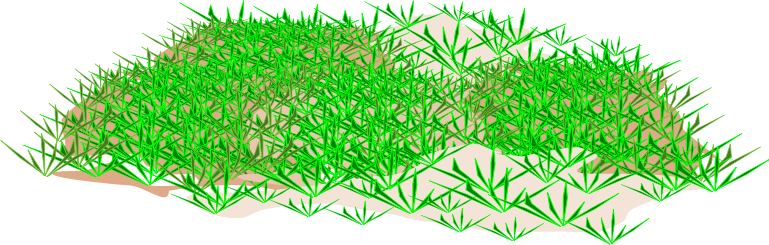 Grass free to use clipart 3