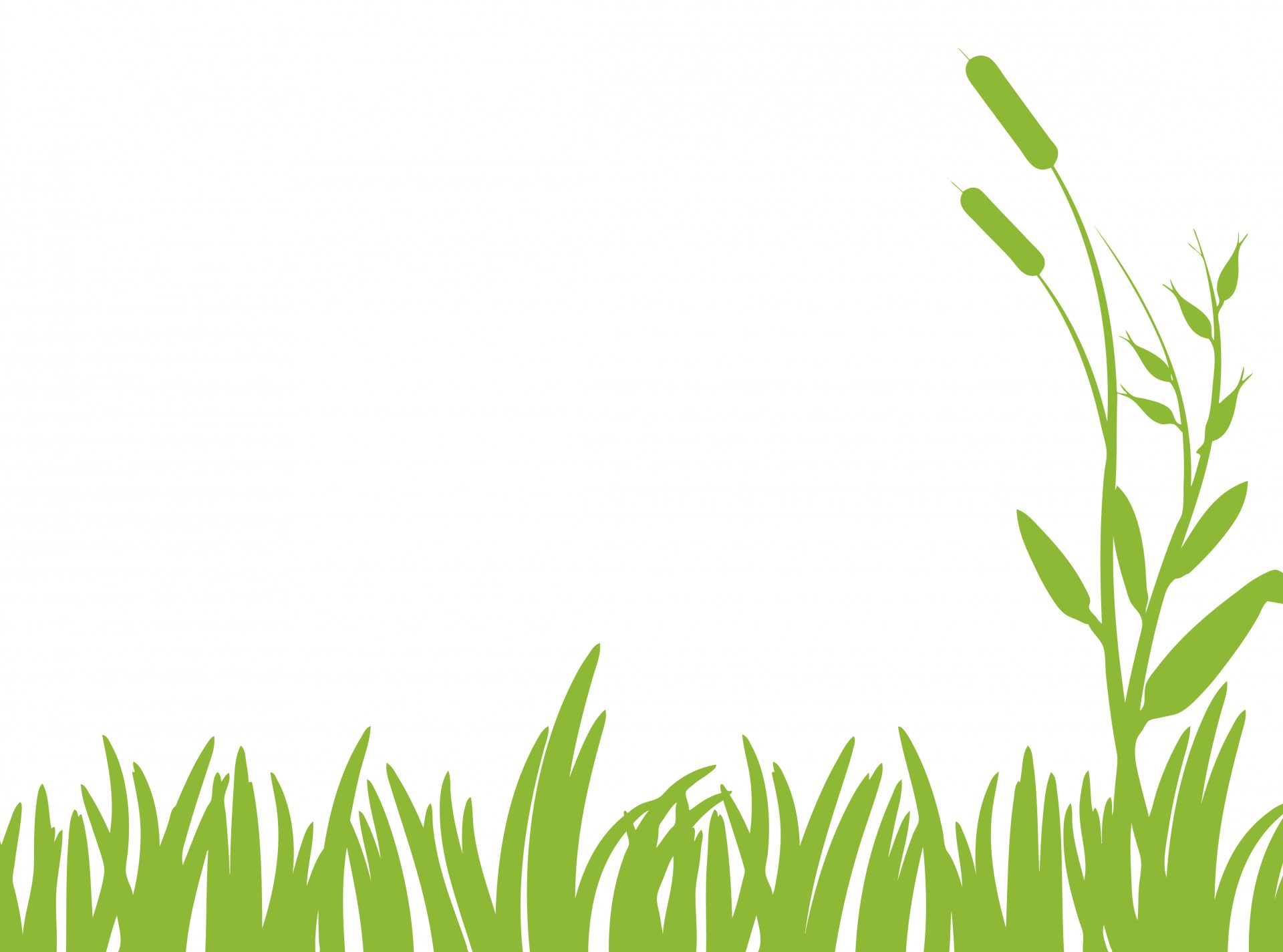 Grass lawn clipart free images