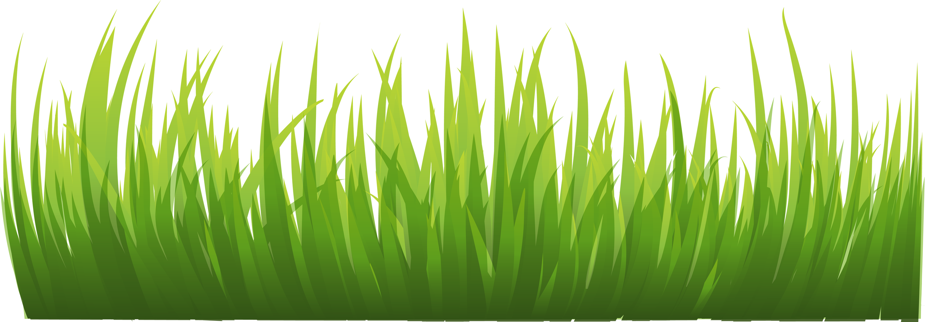 Green grass clipart