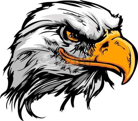 Hawk clip art free clipart