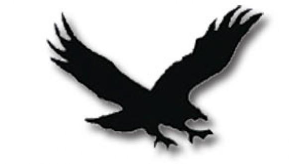 Hawk clipart 4