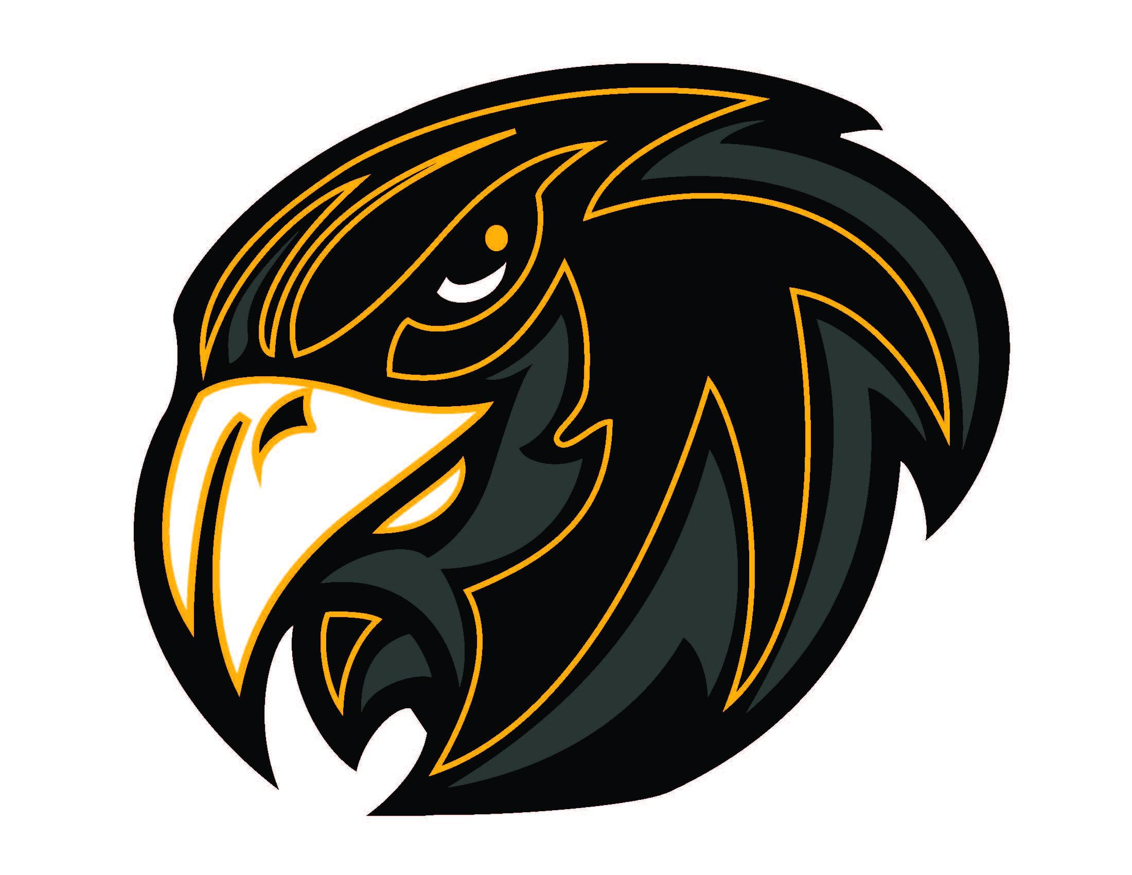 Hawk clipart 5 clipart