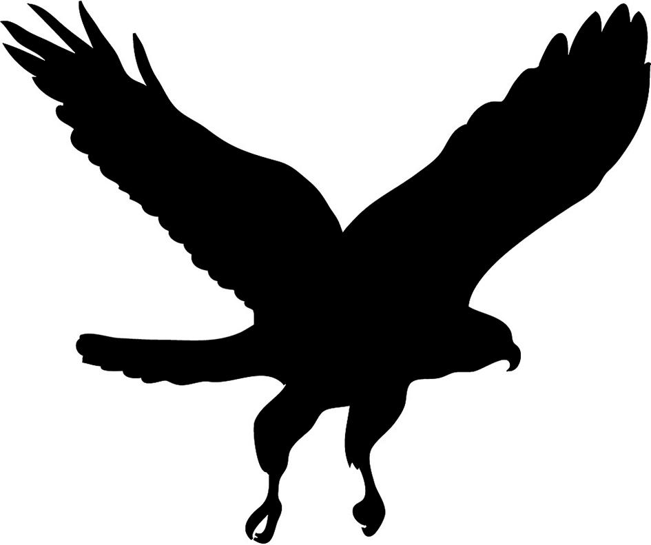 Hawk mascot clipart free images 3