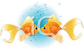 Kissing goldfish free clip art illustration