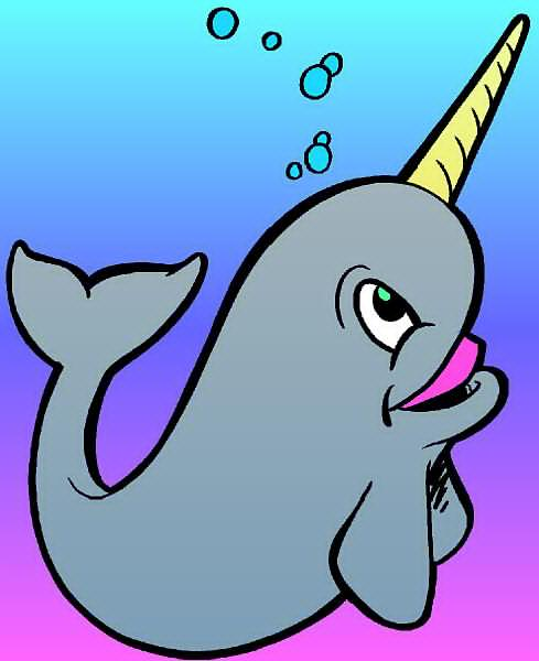 Narwhal clip art free clipart images 2