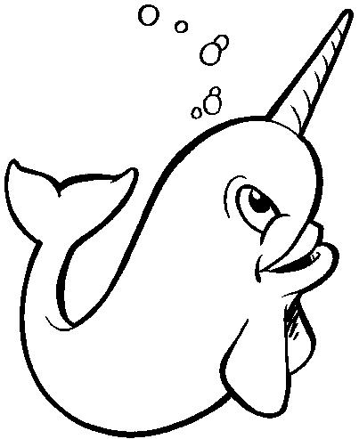 Narwhal clip art free clipart images 5