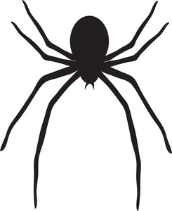 Spider clip art with transparent background free