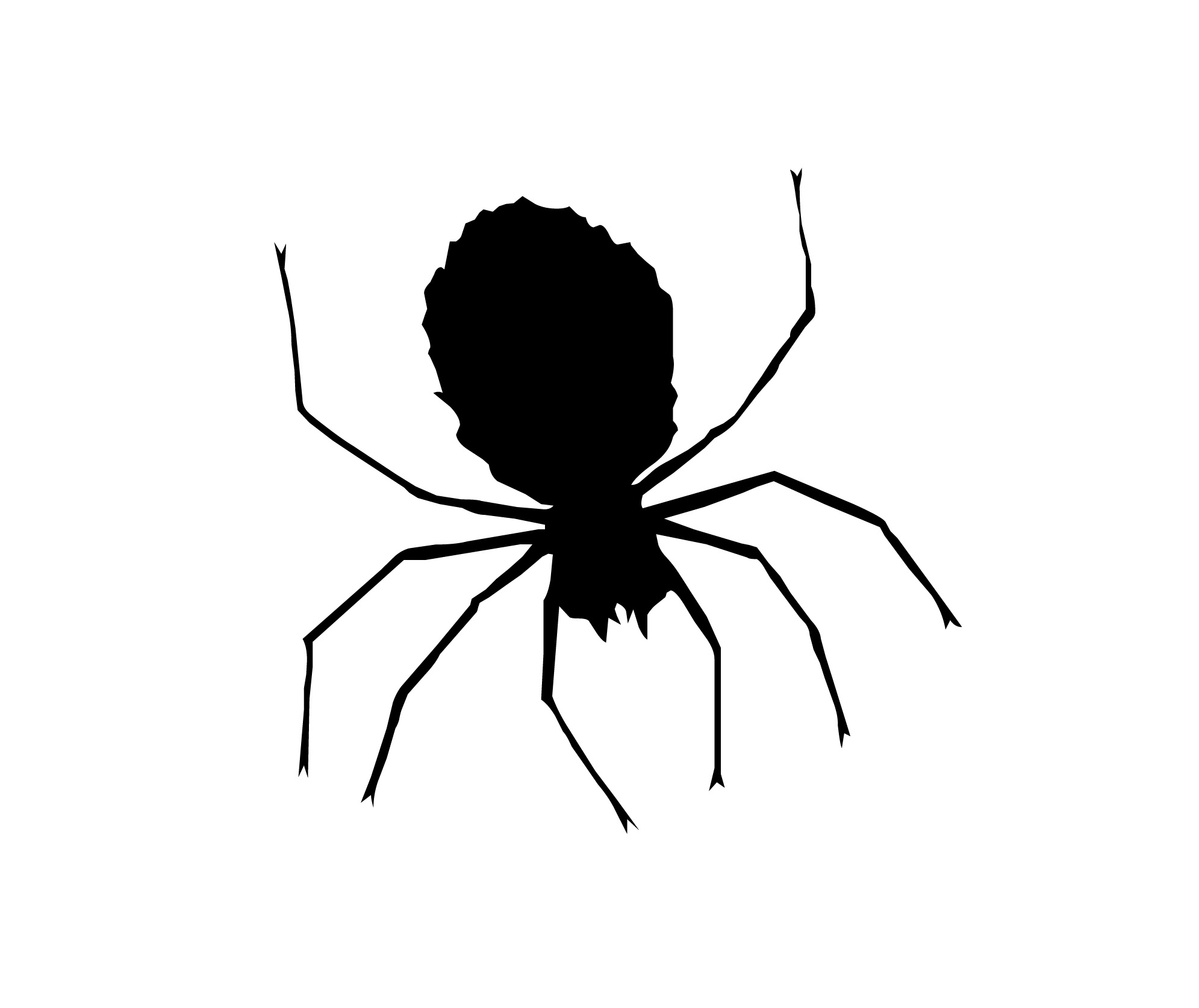 Spider clipart free clip art