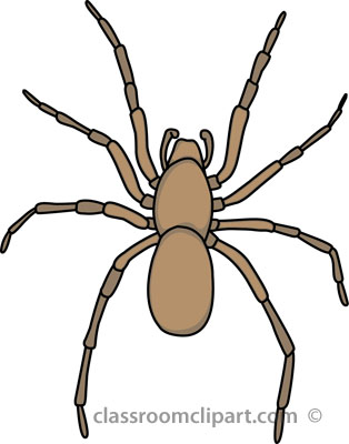Spider clipart free images 5