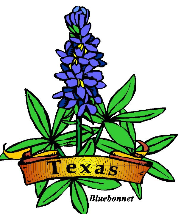 State of texas outline clip art 3