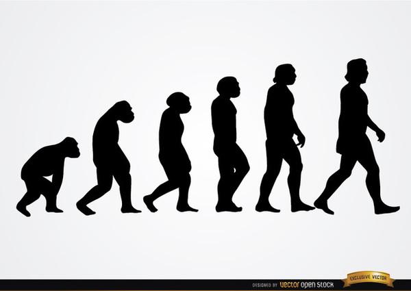 Evolution clip art images free clipart 4