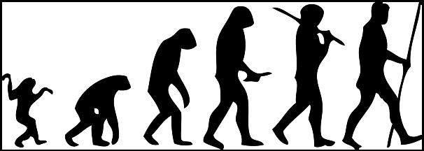 Evolution clip art images free clipart 6