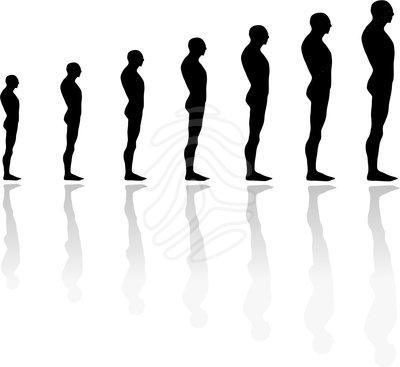 Human evolution clipart 5