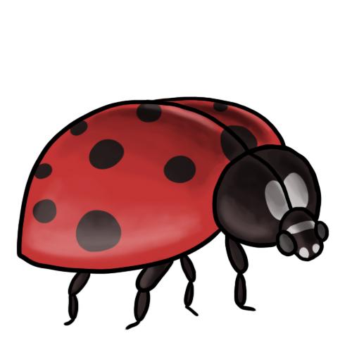 Clipart ladybug clipart image 1 2