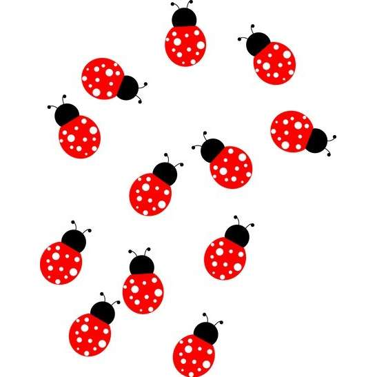 Cute ladybug drawings free clipart images 3