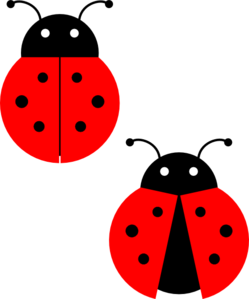 Cute ladybug drawings free clipart images
