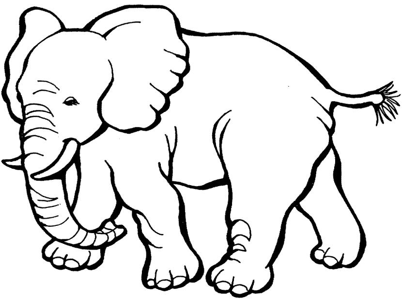 Elephant clip art 2