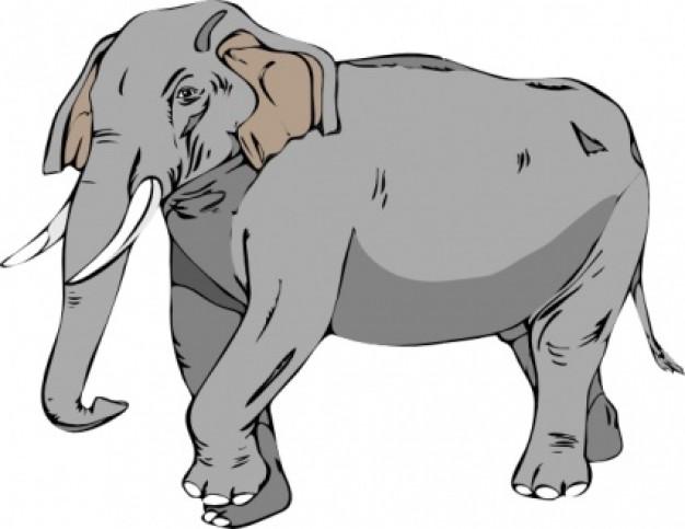 Elephant clipart elephant