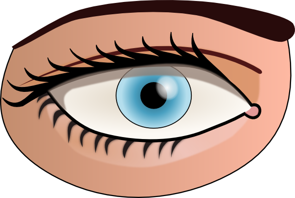 Eye free to use clip art
