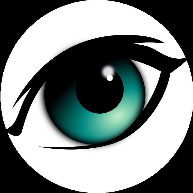 Eyeball eye clipart or cartoon image 2