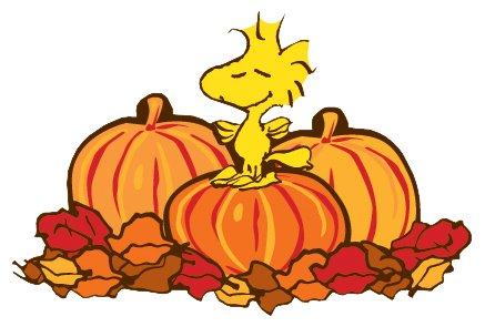 Fall leaves fall clip art autumn clipart 3 2
