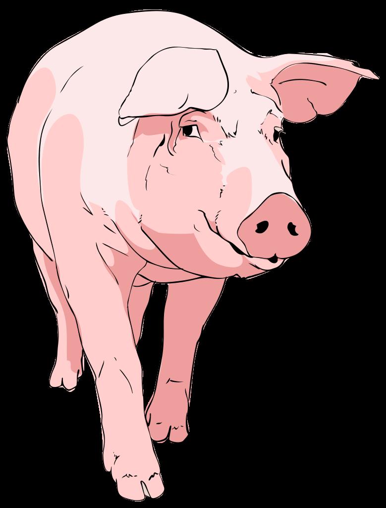 File pig clipart svg mediamons