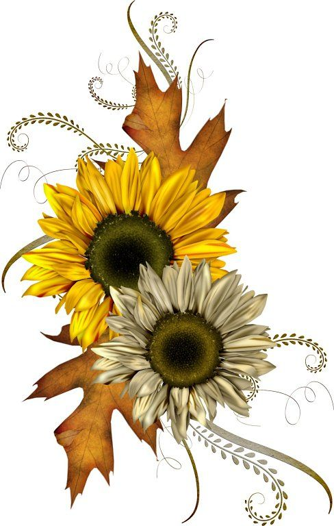 Free fall images about autumn clip art and on