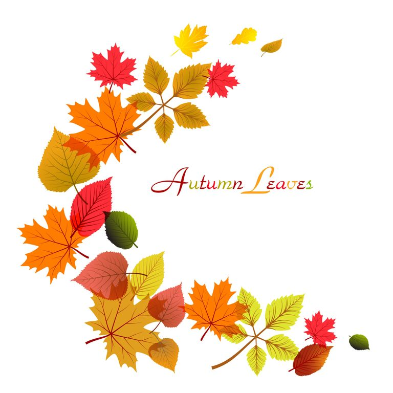 Free fall leaves clip art collections 2