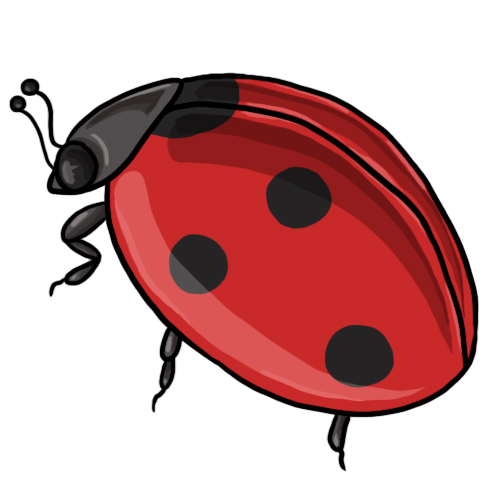 Free ladybug clip art drawings and colorful images 2