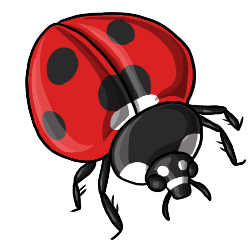 Free ladybug clip art drawings and colorful images 5