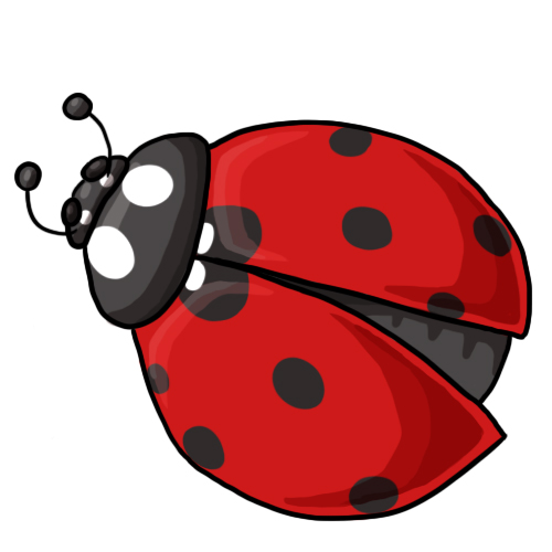 Free ladybug clip art drawings and colorful images