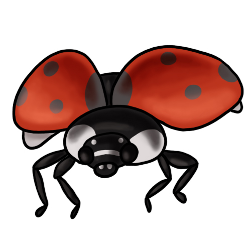 Free ladybug clip art drawings andlorful images