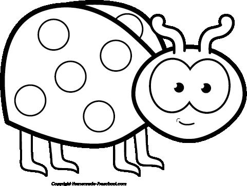 Free ladybug clipart 7