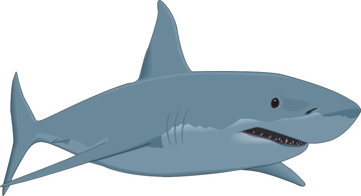 Free shark clip art free clipart images 2
