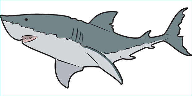 Free shark clip art free clipart images 5