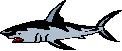 Free shark clipart clip art pictures graphics illustrations 2