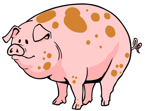 Gallery for show pig clip art free
