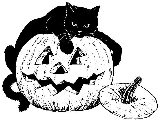 Halloween  black and white pumpkin black and white halloween clipart pumpkin 2