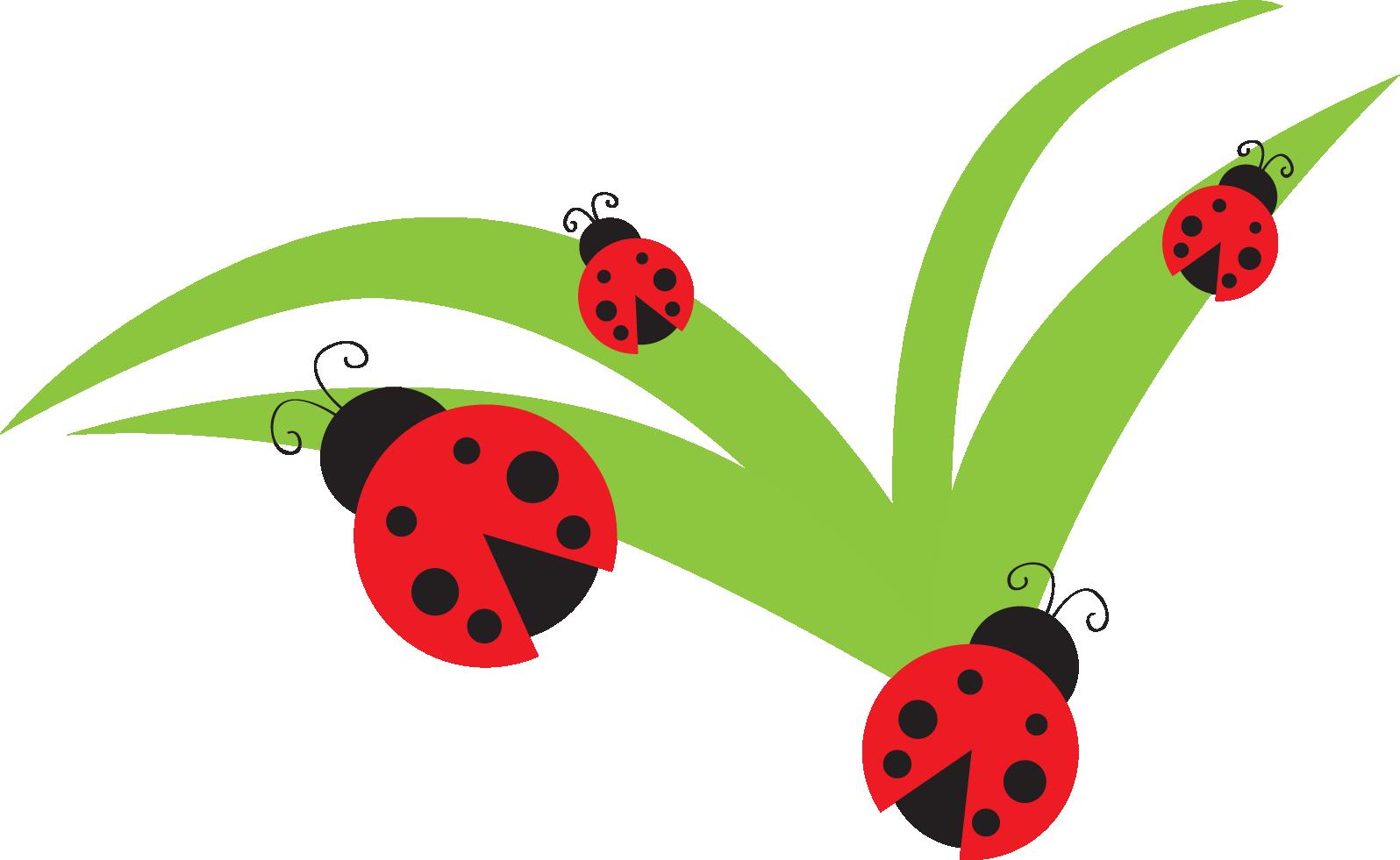 Ladybug clip art images