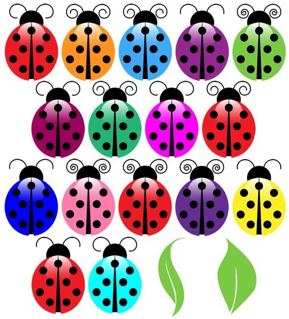 Ladybug clipart free 3