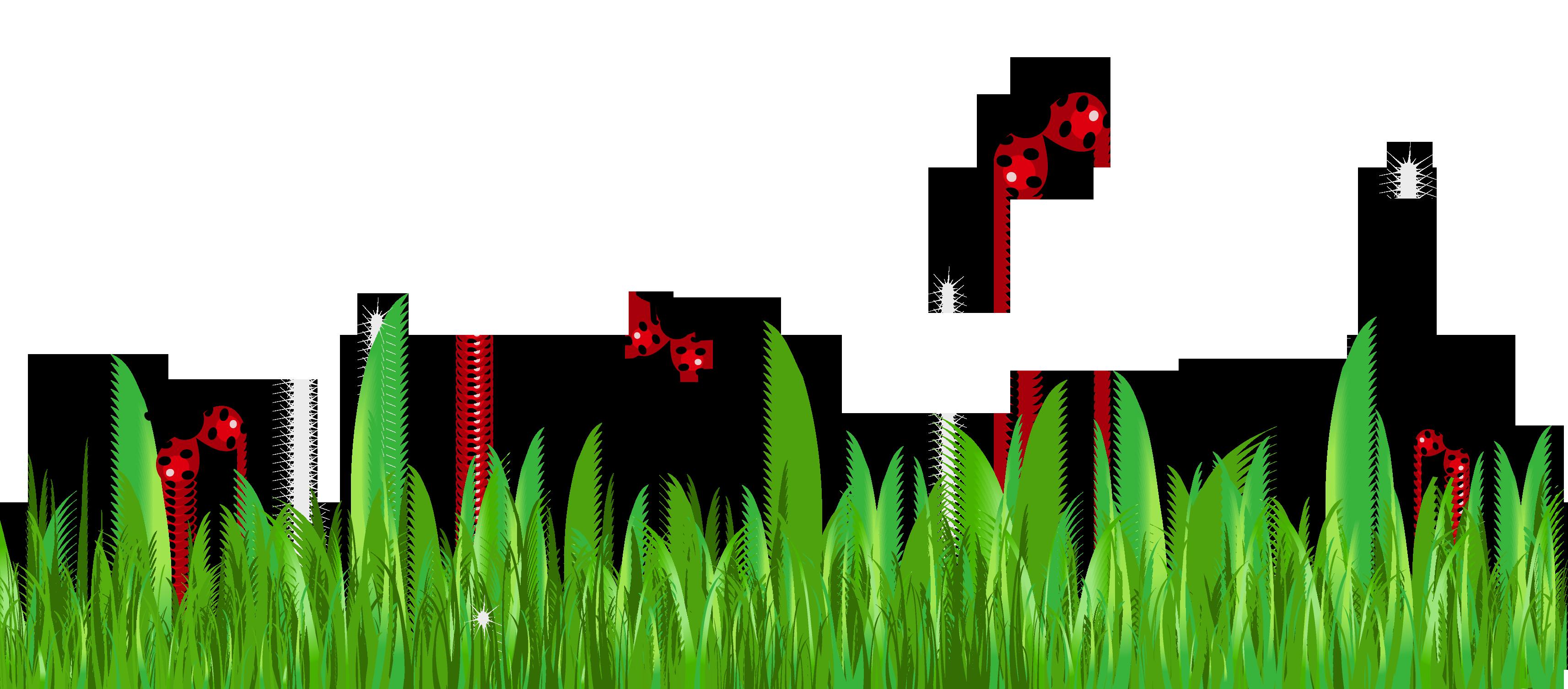 Ladybug lady bug clip art free pictures 2