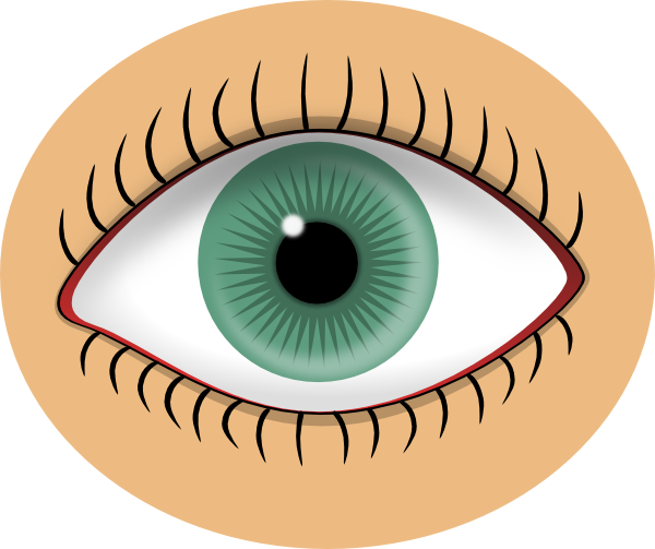Looking eyes clip art free clipart images