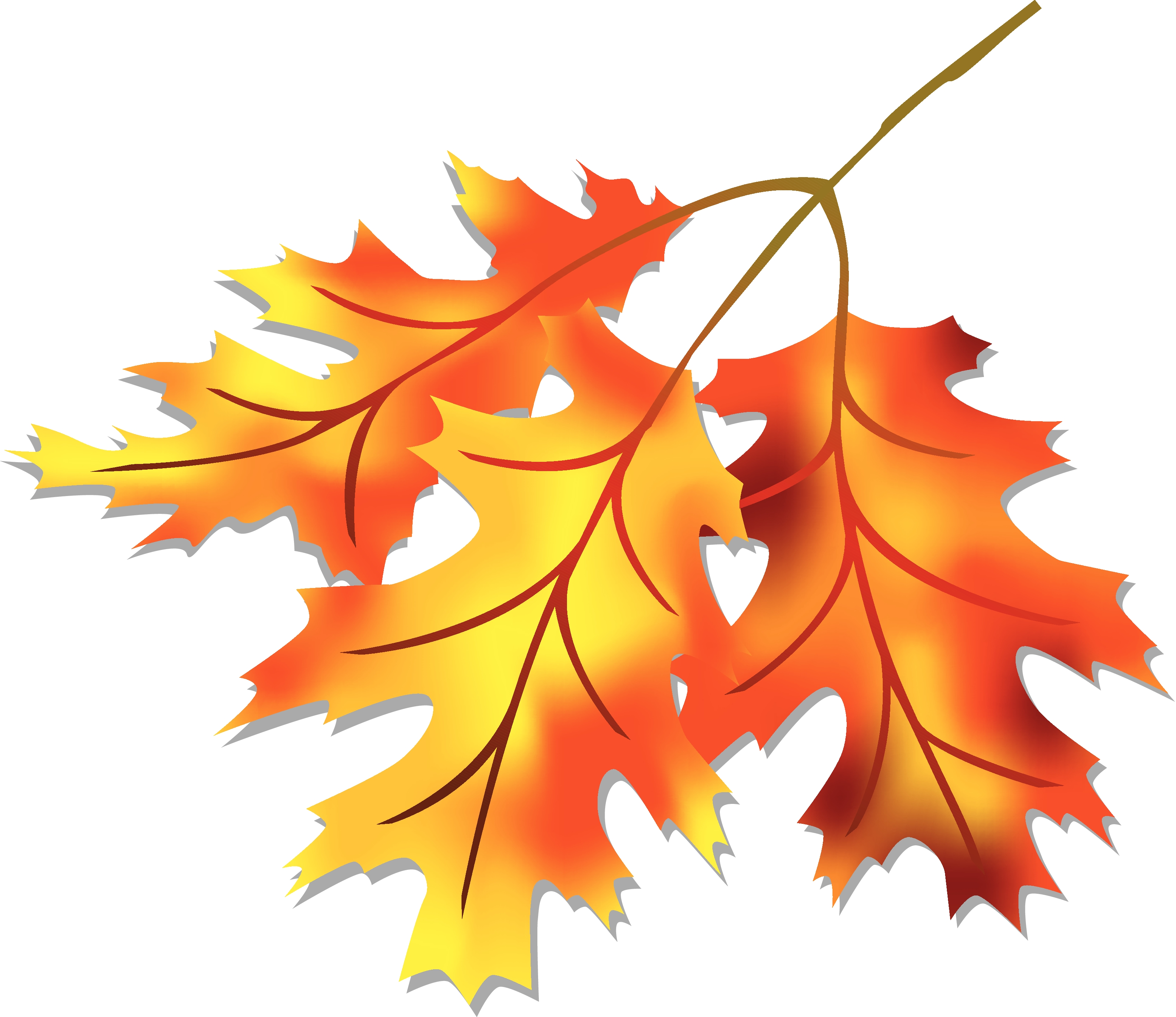 Photos of fall leaf clip art leaves free