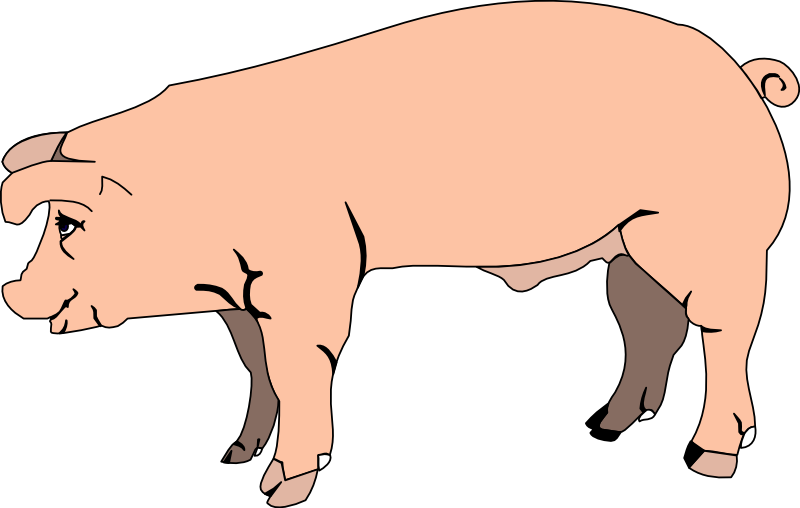 Pig clip art black and white free clipart images 2 2